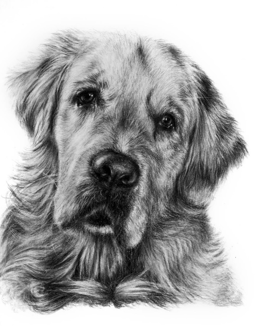 01-Nostalgia-Krystan-Grace-Humans-and-Dogs-Charcoal-Portrait-Drawings-www-designstack-co