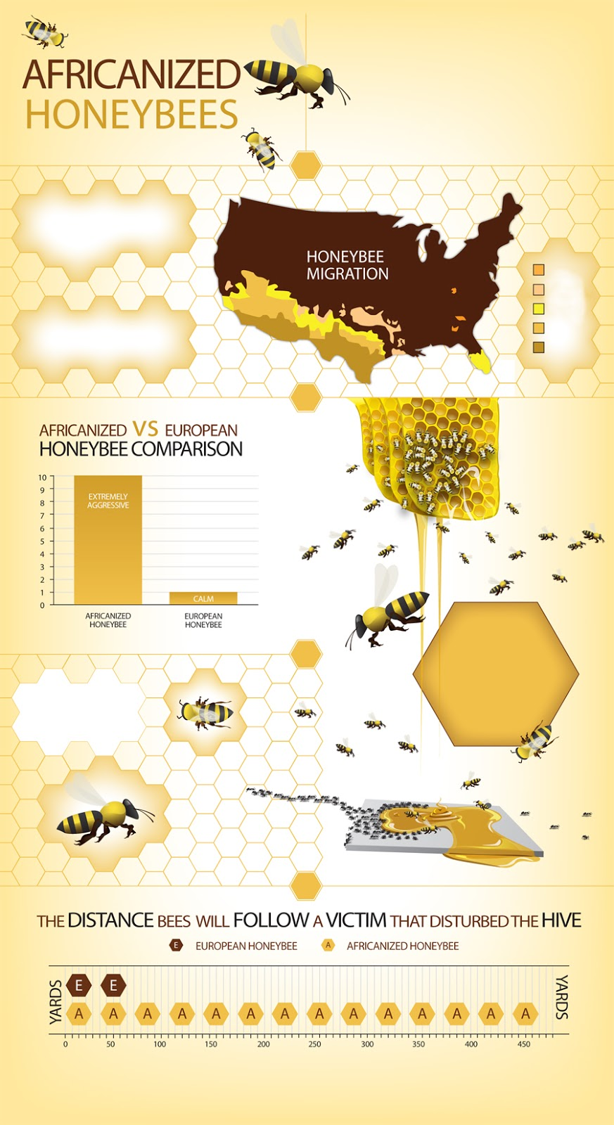 AFRICANIZACION DE ABEJAS EN LOS EEUU - AFRICANIZED HONEY BEES IN THE U.S.