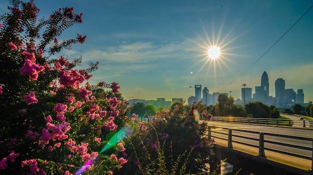 Vista del SkyLine de Charlotte (Publicdomainpictures.net)