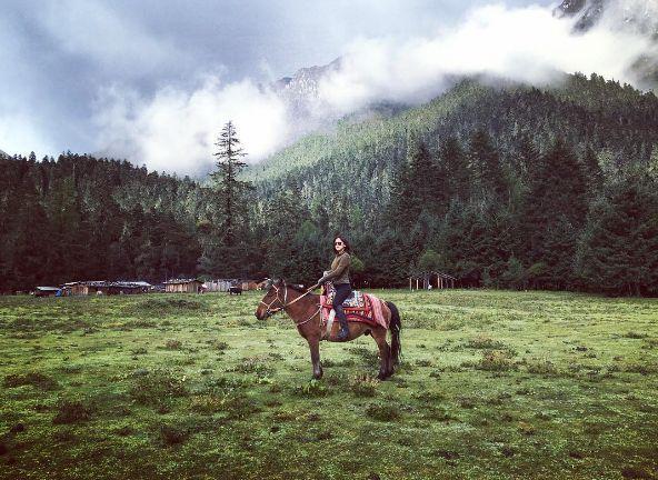zhu zhu horse ride salmansnews.com