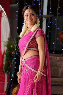 Nisha Agarwal hot saree