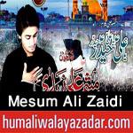 http://www.humaliwalayazadar.com/2016/10/mesum-ali-zaidi-nohay-2017.html