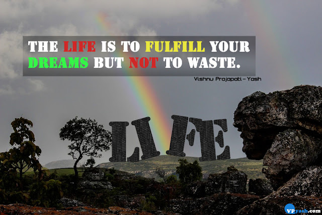 life is to fulfill your dreams quotes