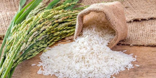 6 Ưu điểm vượt trội của gạo hữu cơ so với gạo thông thường