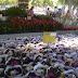 Exposição flores de Holambra  na praça da Santa Casa
