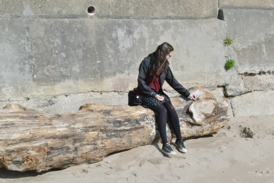 sitting log beach scotland seaside photo an hour may 2016
