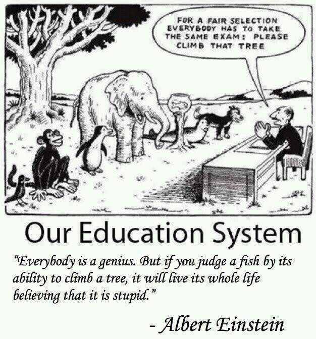 How Our Education System Fails Most Students