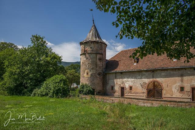 Château de Thanvillé (Alsace)
