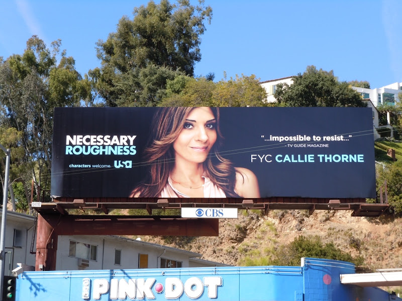 Necessary Roughness Award Consideration billboard