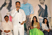 Ameerpetlo audio success meet photos-thumbnail-11
