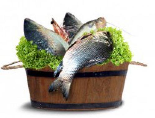 Luscious bengali fresh fish online from fresh fish basket for Fresh fish online