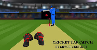 Play cricket tap catch game online