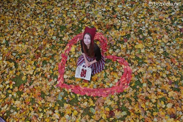листья деревьев осенью фото