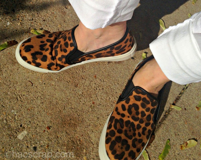 What I wore - leopard slip-ons