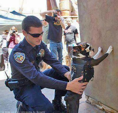 Lustige Spaß Bilder Polizist tastet Rocker Hund ab