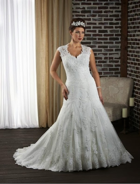 RainingBlossoms: 2014 New Plus Size Wedding Gowns in ...
