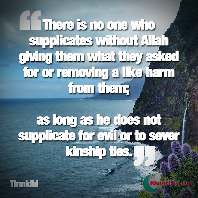 Allah Quotes : There is no one who supplicates with Allah