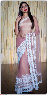 Pragya Jaiswal in lovely Transparent Lace Border Work Saree 1.jpg