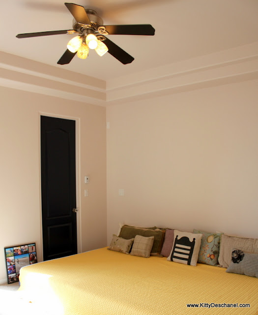 master bedroom with double tray ceiling