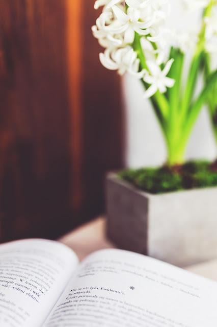 książka, sieczkarnia, nazwa bloga, nazwa sieczkarnia