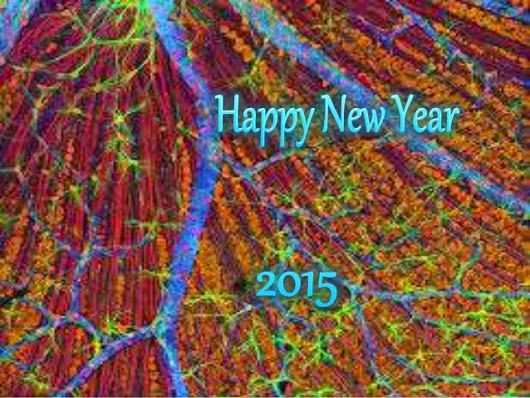 Colorful Happy New Year 2015 Wallpapers