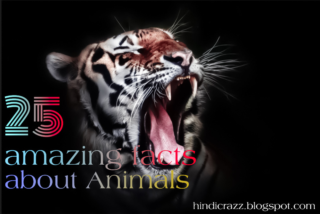 Amazing facts about animals in hindi