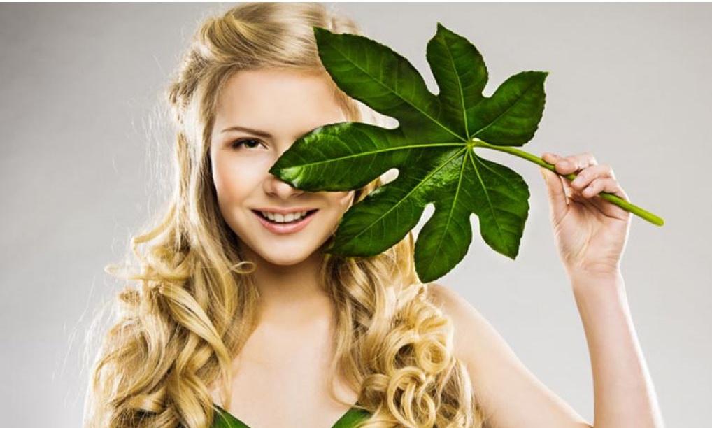 El mejor medio para el lavado y el tratamiento de los cabello