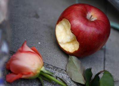 Resultado de imagem para fruta mordida