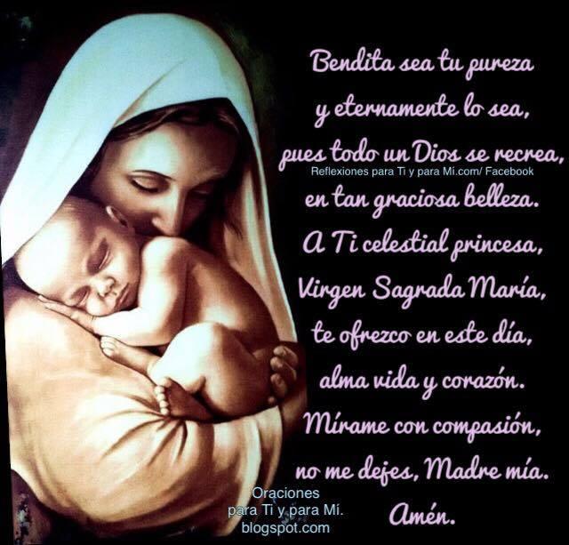 Bendita sea tu pureza y eternamente lo sea, pues todo un Dios se recrea, en tan graciosa belleza.  A ti celestial princesa, Virgen Sagrada María, te ofrezco en este día, alma, vida y corazón.  Mírame con compasión, no me dejes, Madre mía.  Amén!