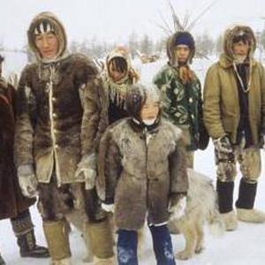 Daerah Budaya Kutub