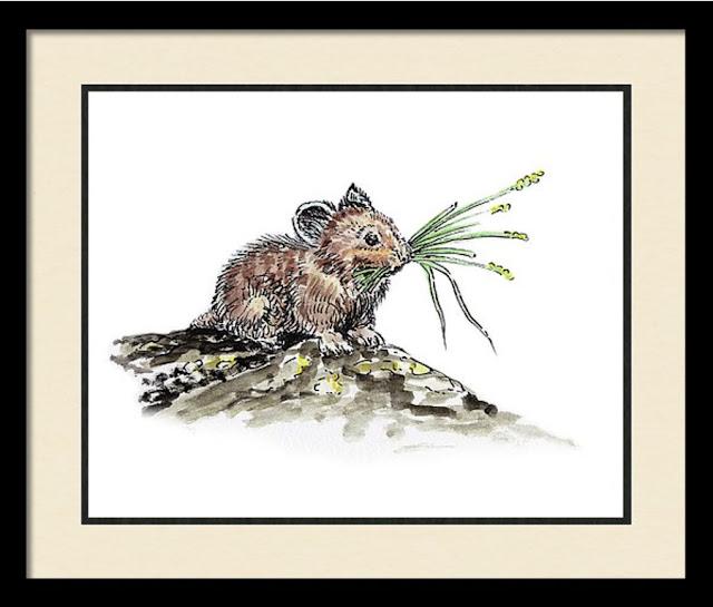 Watercolour Artist Illustrator for children media