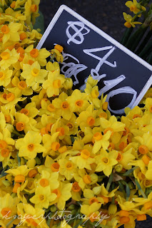 Daffodils at the Farmers Market