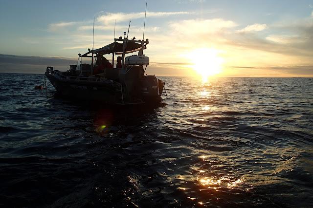 Vene merellä aurinkon alkaessa laskea.
