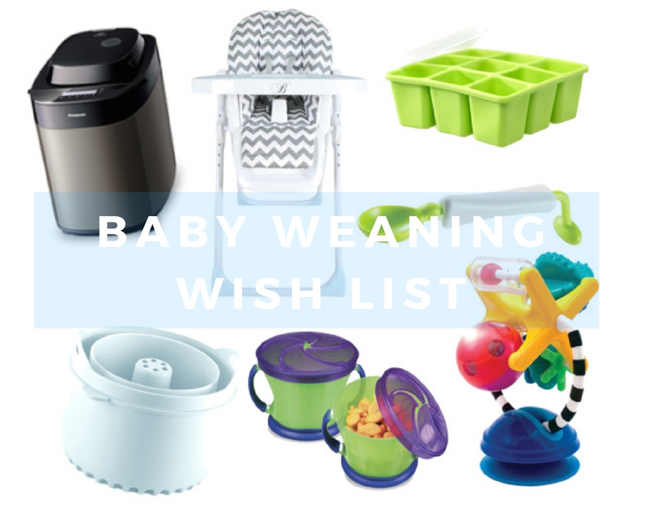 Baby Weaning Wish List.
