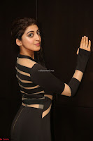 Pranitha Subhash in a skin tight backless brown gown at 64th Jio Filmfare Awards South ~  Exclusive 127.JPG