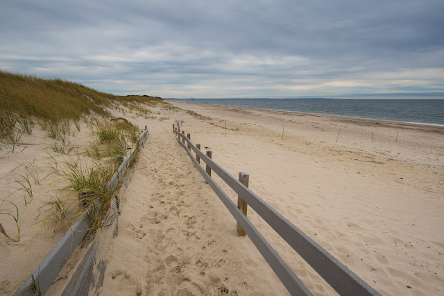 Sandy Neck beach-Cape Cod