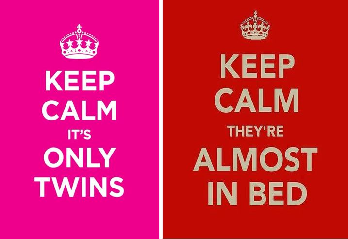 Being A Twin Mom Quotes. QuotesGram