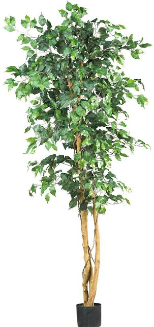 Artificial Ficus Silk Tree