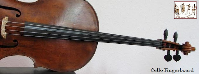 Along the neck of the instrument is the fingerboard. The cellist presses the strings down onto different parts of the fingerboard to make different notes.