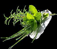 fresh-herb-mayonnaise