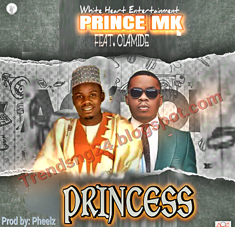 Music: Prince Mk - Princess ft Olamide