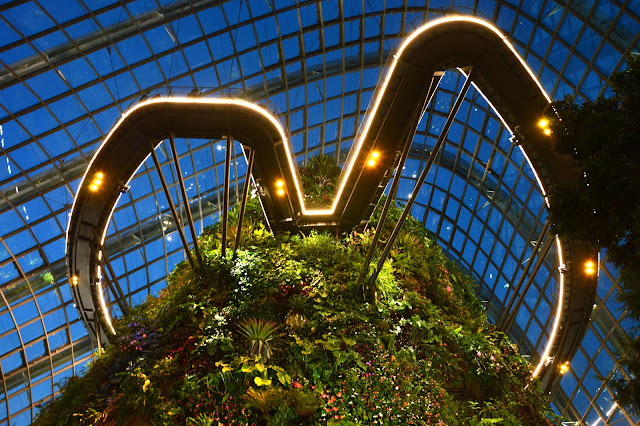 Cloud Forest Garden by the Bay Singapore