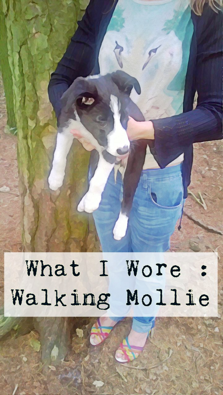 What I Wore: Walking The Puppy In My Crocs
