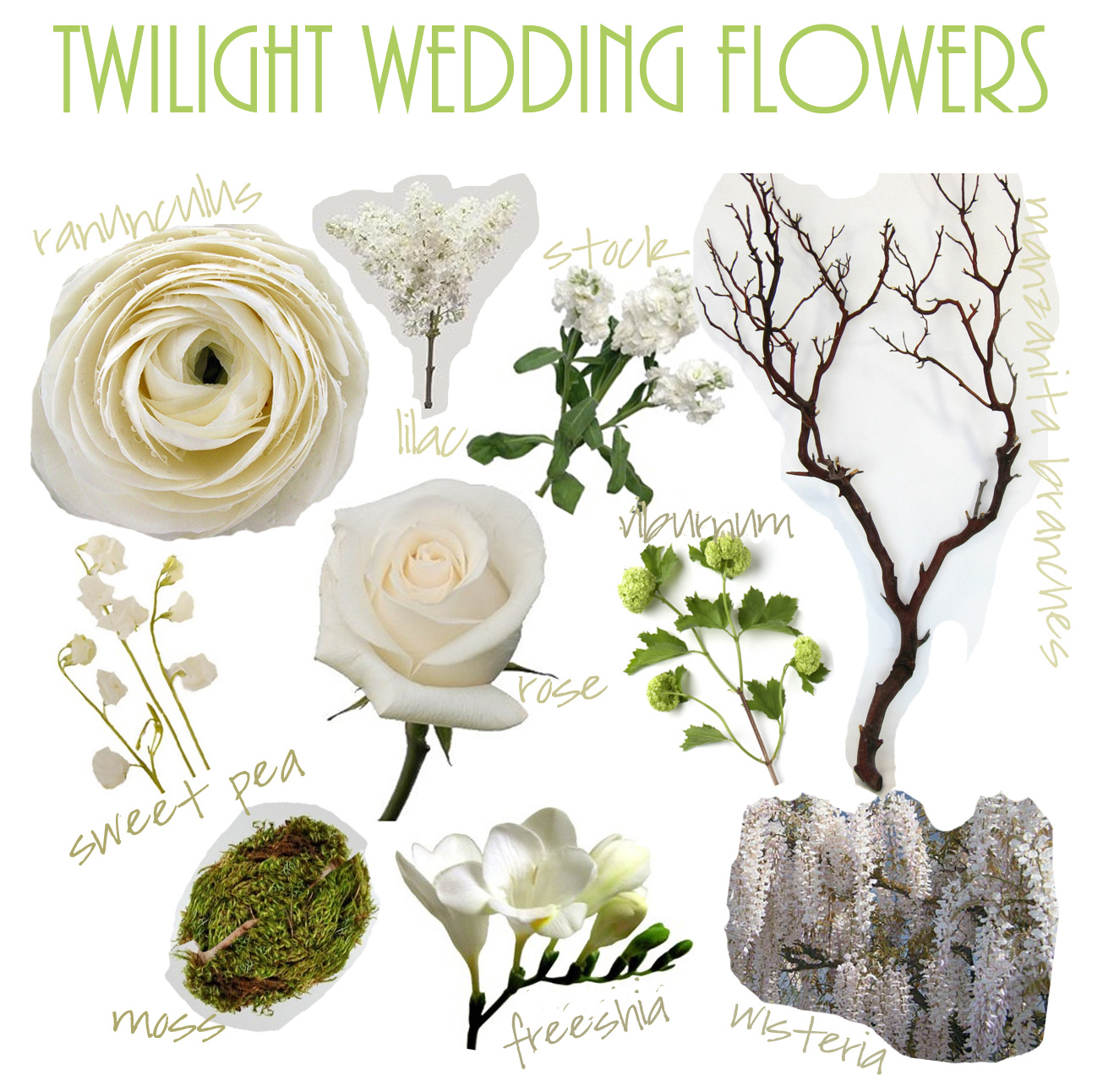 used wedding bouquets flores sol twilight wedding flowers 8208