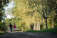 Novios caminando abrazados en un paisaje natural. Pareja. Sesión de compromiso. E session