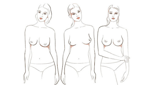 Apparently, There Are Seven Different Kinds of Boobs