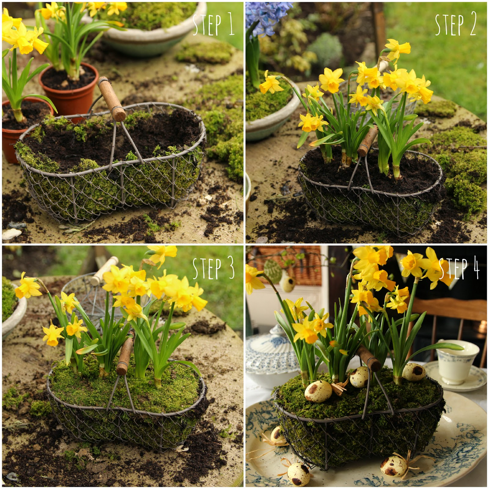 Step by step daffodil and moss flower display
