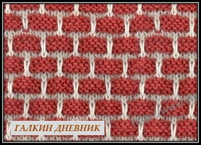 lenivii jakkard (2)