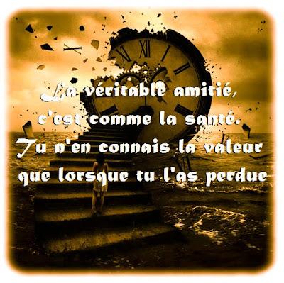 Citation D Amitie Perdu Vb09 Jornalagora