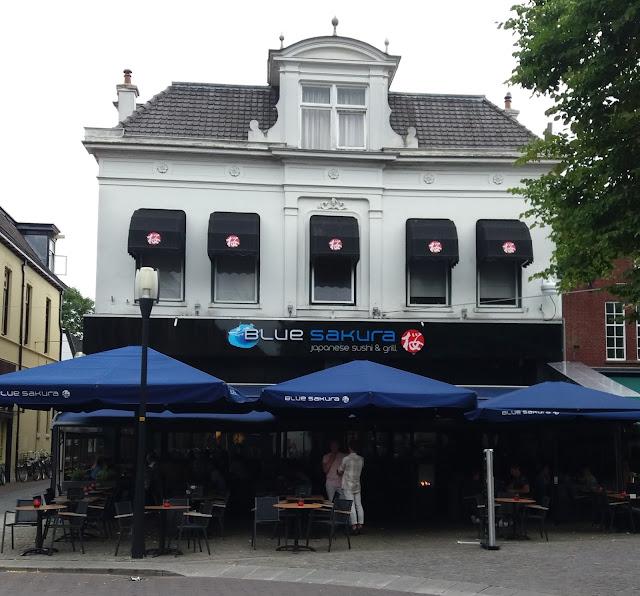 20170703 191431 - Blue Sakura in Enschede